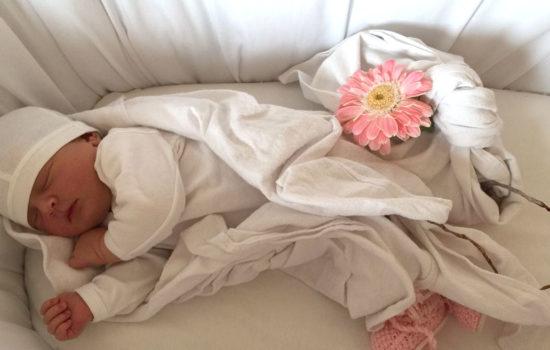 lotus-birth-culla
